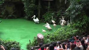 The bird park was amazing